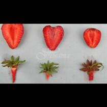 Търговец на едро ни сподели как да си избираме ягоди-  5 тайни, с които никога няма да сбъркате в избора си