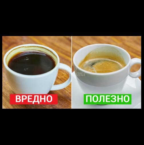 7 важни факта, които всеки, който пие кафе трябва да знае