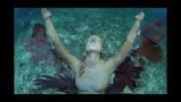 Подводните скулптури на Джейсън Тейлър край бреговете на Гренада, Бахамските острови и Мексико