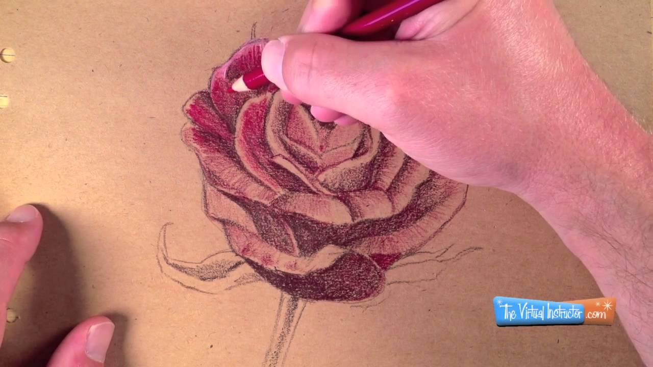 Как да нарисуваме роза с цветни моливи