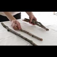 Как да си направим коледна елха от съчки