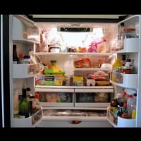 Те забравиха хладилника отворен, а това, което видяха, ги изуми