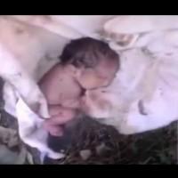 Дар от Господ открил новородено по пътя към работа