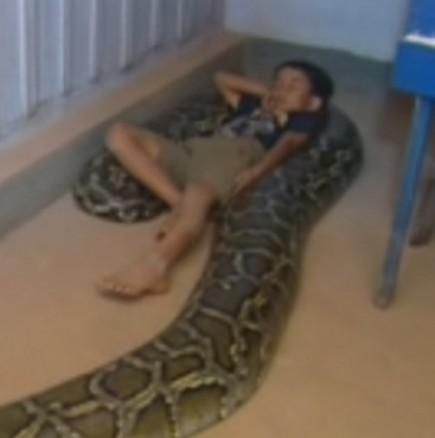 Като бебе спеше с змия