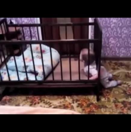 Бебе излиза от кошчето само