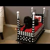 Как да направим легло за кучето си