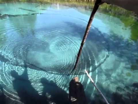 Живо езеро в Русия