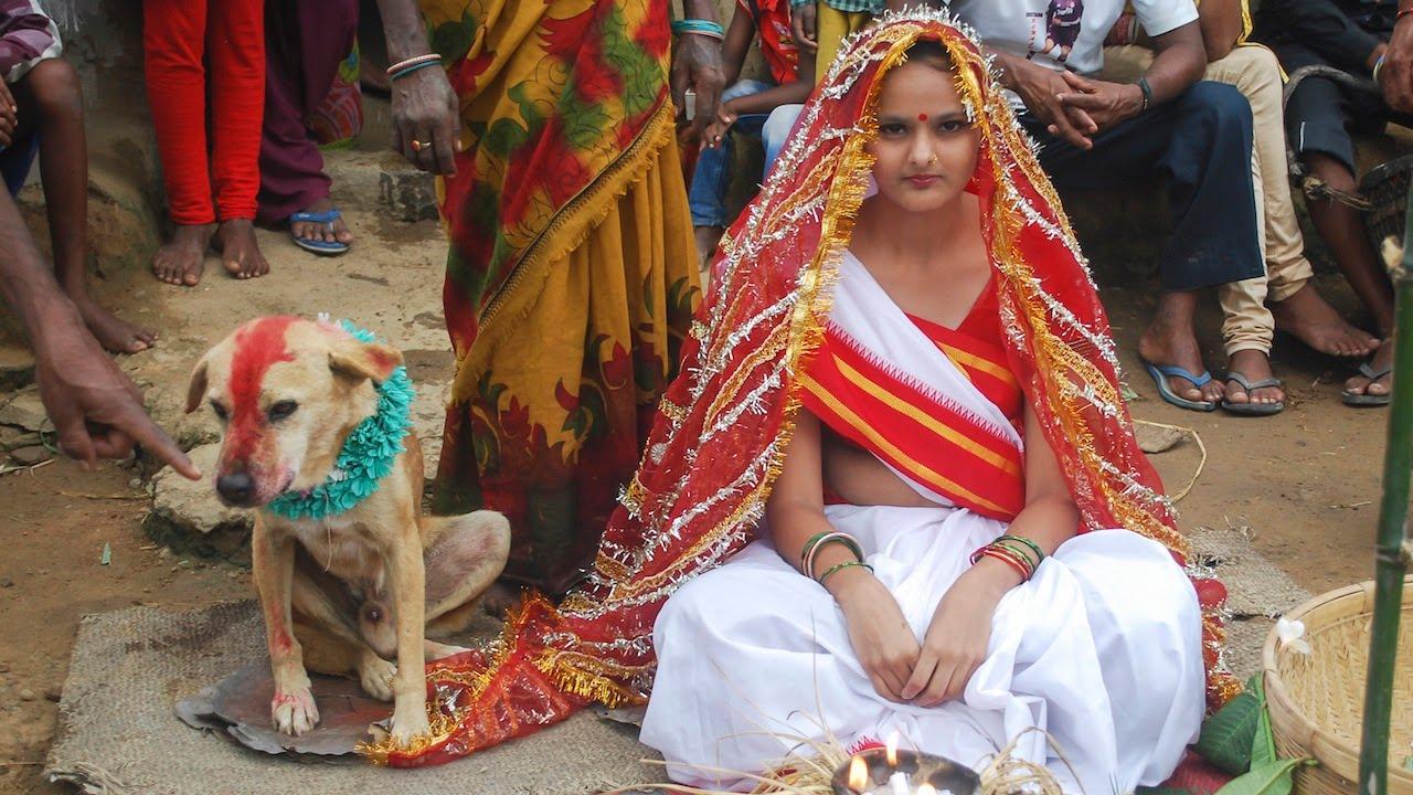 Жена се омъжи за куче