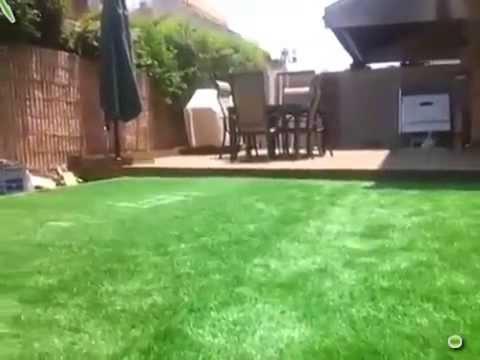 Вижте, какво се крие под тревата!