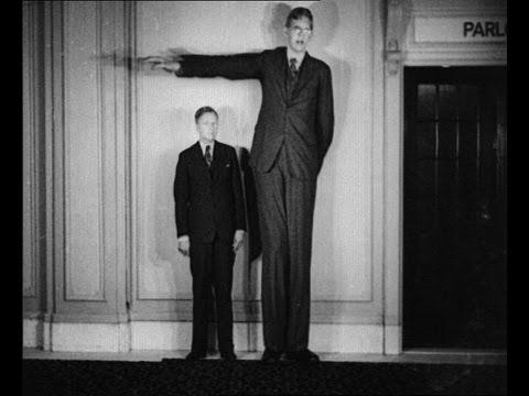 Най-високият човек на света