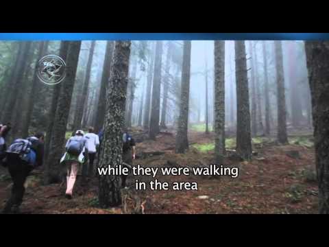 Извънземно в България