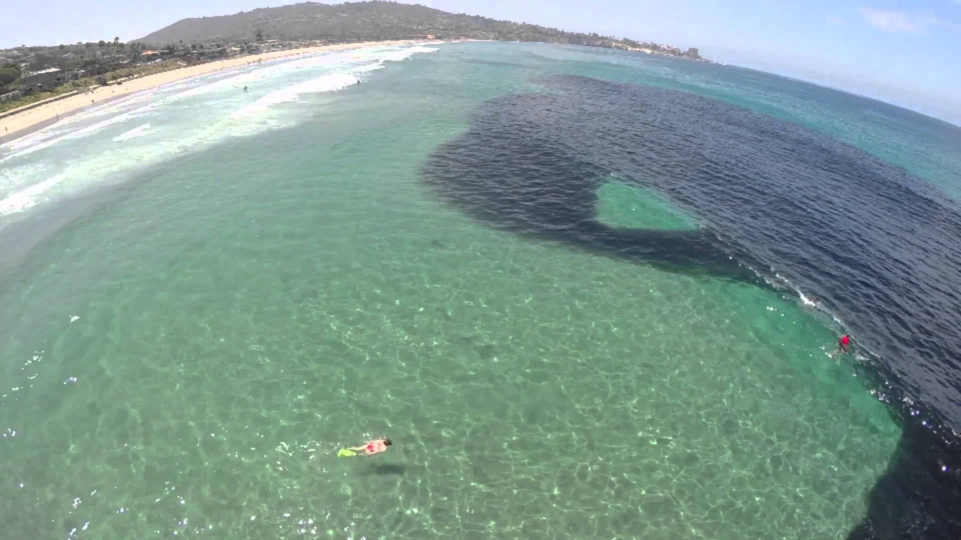 Невероятно видео от океана