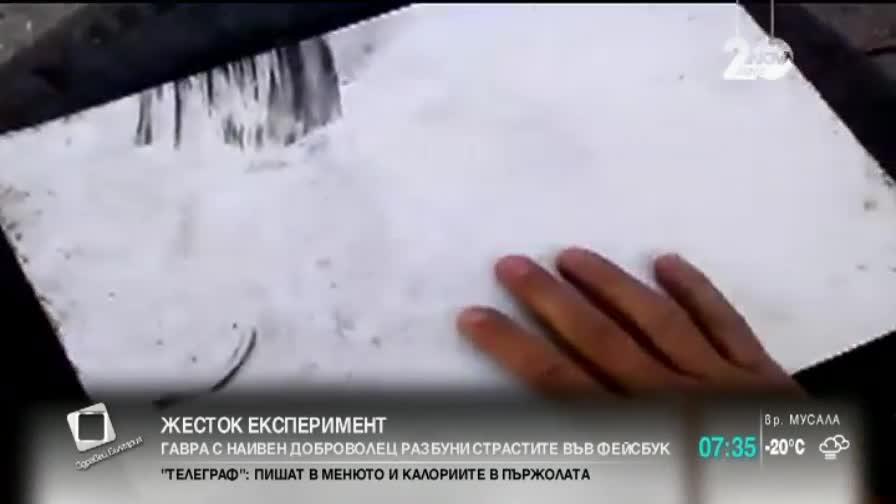 Жестокия експеримент с изстрелване на човек