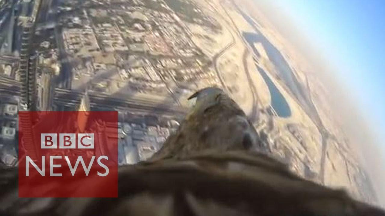 Дубай от гледната точка на един орел