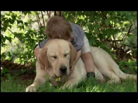 Дете си играе с куче