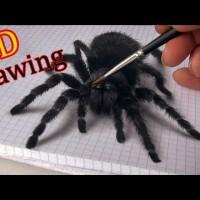 Уникална 3D рисунка на паяк