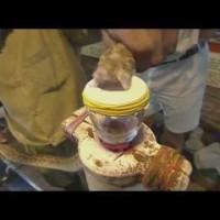 Какво се случва на кръвта след ухапване от змия