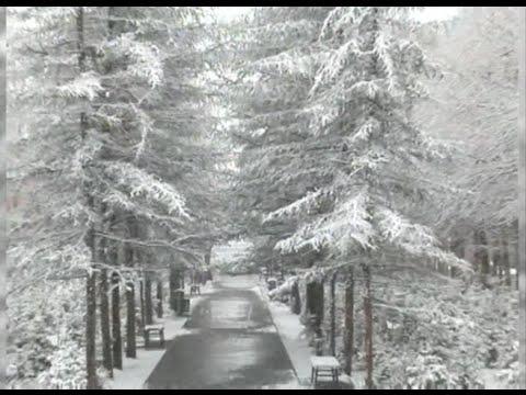 Сняг през май