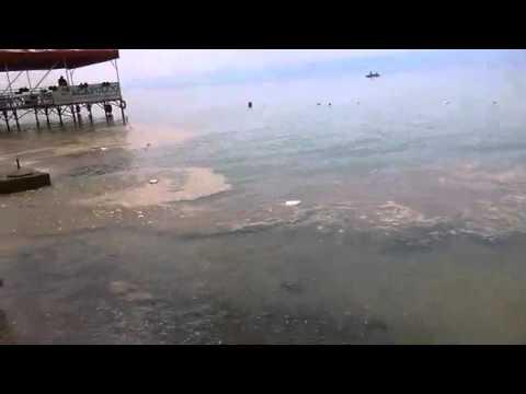 Замърсено езерото в Охрид