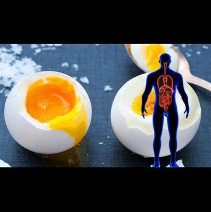 Яйцата са полезни за сърцето
