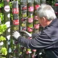 Той събирал празни пластмасови бутилки.. Това, което направил за една година е невероятно красиво! (Видео)