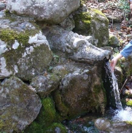 Жива вода разпознава грешници