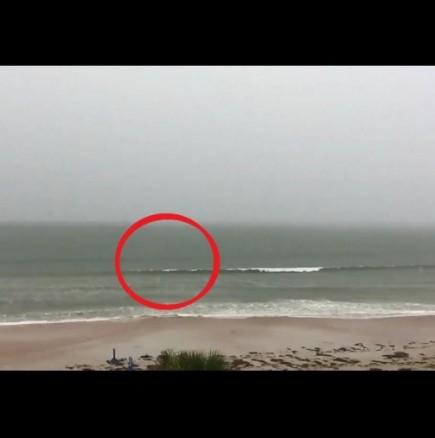 Не е истина, трябва да го видите: те просто си снимаха морето, когато изведнъж... (ВИДЕО)