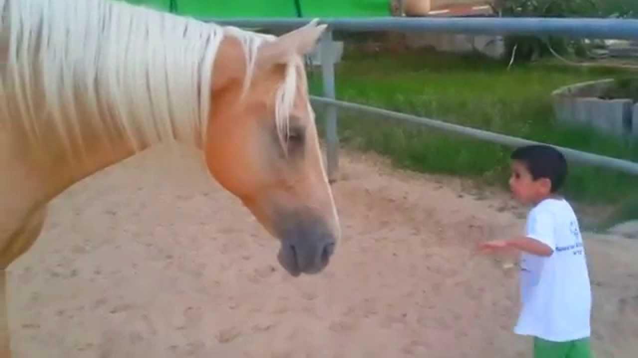 Уникално сърцеразбивателно видео
