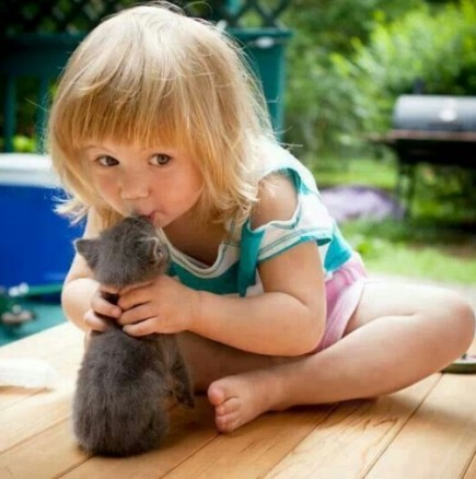 Малки котенца като анти-стрес терапия